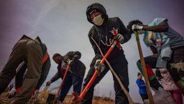 People with masks dig together using shovels