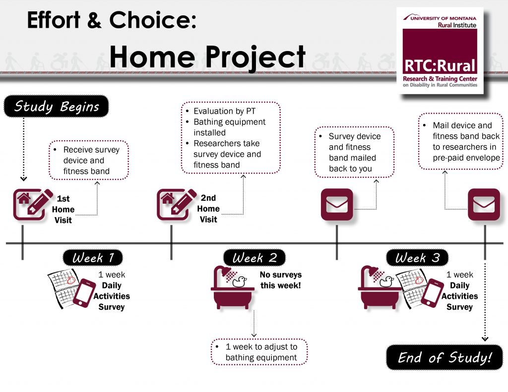 Effort Capacity and Choice Home Project timeline. See link below image for text description.