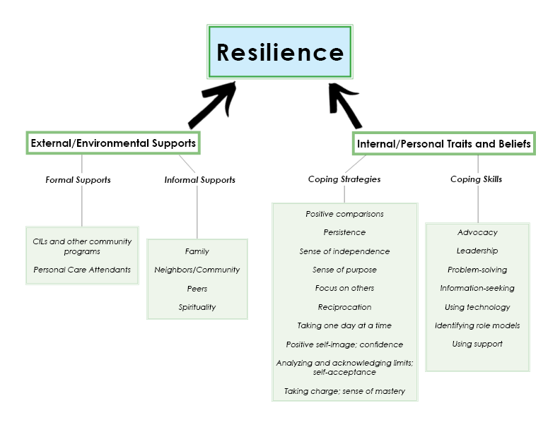 Flow chart showing results of the Resilience Study.