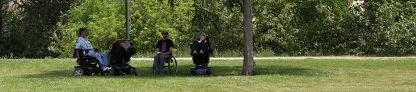 Four people sitting in wheelchairs under a tree, talking